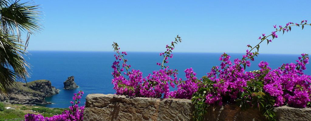 dammuso_pantelleria_010